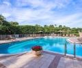 Contessa Pool
